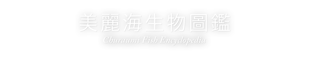 美麗海生物圖鑑(Churaumi Fish Encyclopedia)