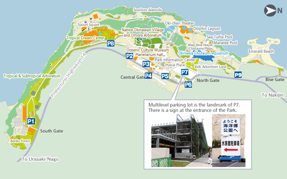 Access Okinawa Churaumi Aquarium For The Next