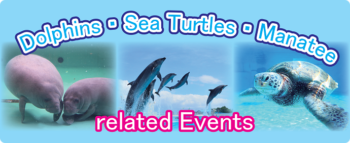 Dolphins・Sea Turtles・Manatee related Events