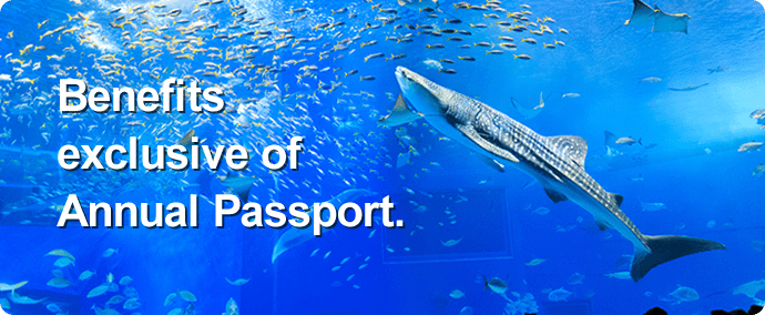Benefits exclusive of Annual Passport.